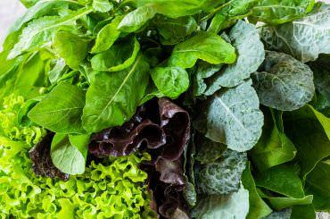 Dementia preventing foods