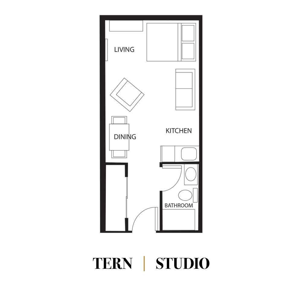 Tern | Studio